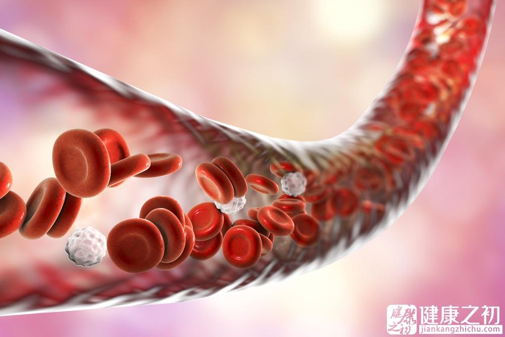 血管.jpg